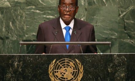 It was in the Family, Mugabe uses sons as delegates for his country's visit at UN Assembly
