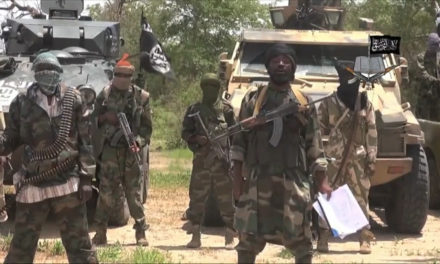 Niger's government proposes accommodating Boko Haram deserters