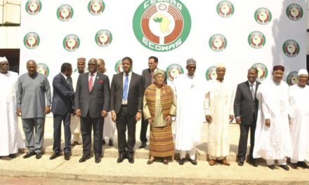 The leaders of ECOWAS Want the birth rate of West Africa to be halved