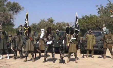 Boko Haram kills 9, kidnaps 45 others in Niger