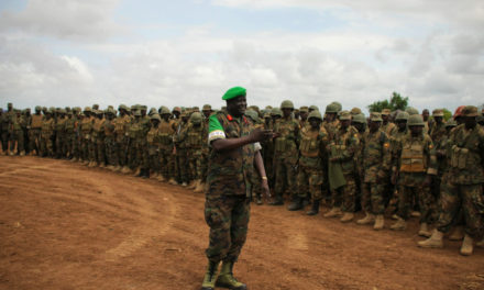 Defense ministers in Africa proposed establishing a rapid response force