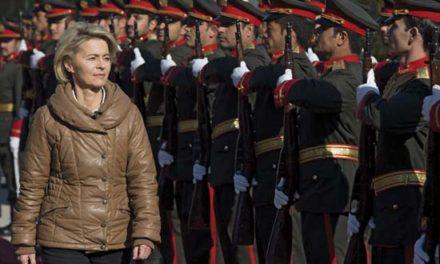 German defense minister arrives in Mali, departs same day