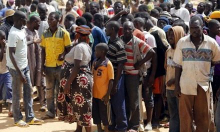 Cameroon Accused of forcibly deporting Nigerian refugees in danger