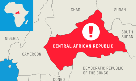Central African Republic Slams Global Witness