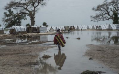 Cholera killed more than 14 people in northeast Nigeria