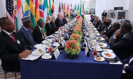 US will continue aid to Africa, and boost investment despite cuts: Trump