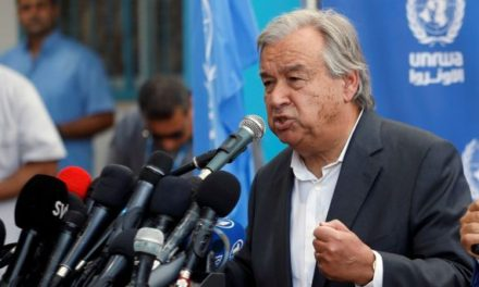 UN secretary general slams attack on peacekeepers in Mali