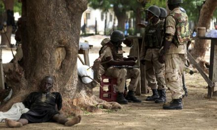 Boko Haram fighters surrender in northern Cameroon