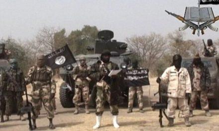 UPDATE: Boko Haram kills 20 in Cameroon, Nigeria attacks