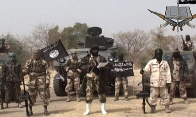 UPDATE: Boko Haram kills 20 in Cameroon, Nigeria attacks