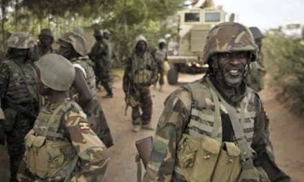 Nigerian troops have Liberated 85 Boko Haram hostages