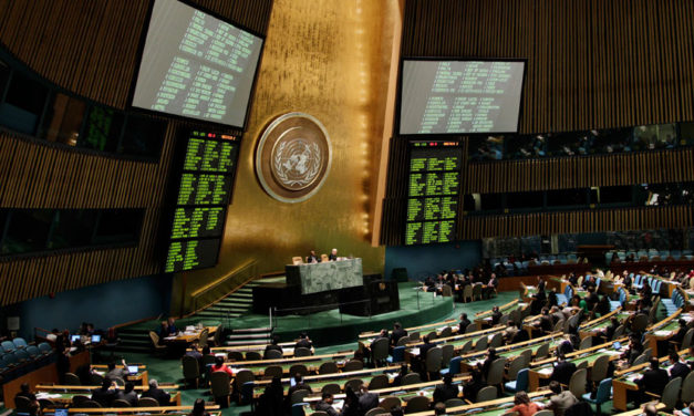 UN General Assembly elects 15 members-states into Human Rights Council