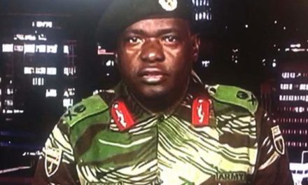 Mugabe's out! Zimbabwe in turmoil after apparent military coup
