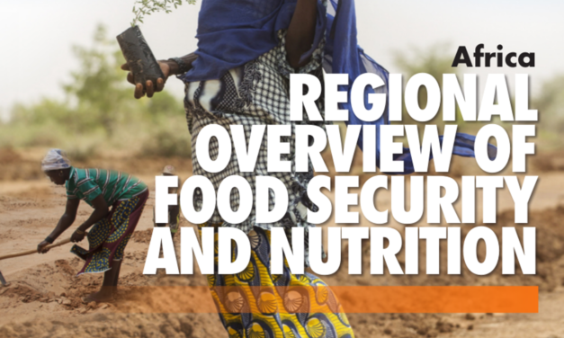 UN Report: Conflicts, drought intensify global food insecurity
