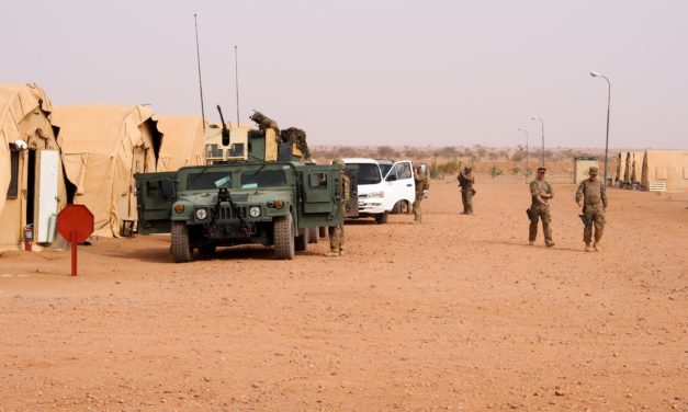 Niger to develop national security strategy to fight terror