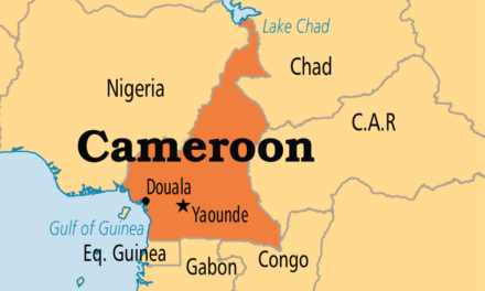 Cameroon votes new Senate as tensions plague anglophone regions