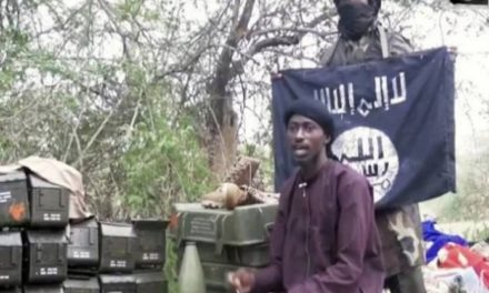 Islamic State ally stakes out territory around Lake Chad