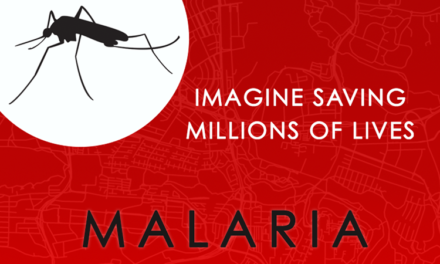 Over 90 percent of Nigerians at risk of malaria: official