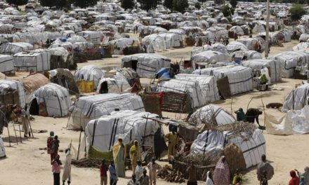 1,200 people displaced by Boko Haram return to Bama
