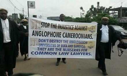 Cameroon's isolated anglophones face humanitarian crisis