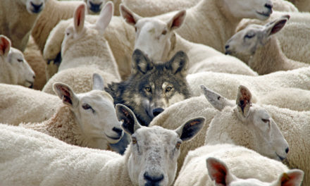 Hiding a Wolf Among Sheep: The Pitfall in the Exxon Mobil–NOCAL's Inquiry