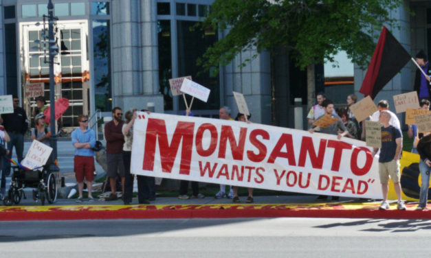 U.S. jury awards 289 Million USD in lawsuit against Monsanto
